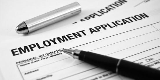 Professional Job Application Services
